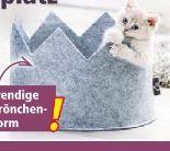 Filz-Katzenliegeplatz von CAT