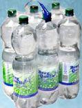 Mineralwasser von Berg Quelle