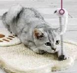 Kratzbrett Tatze von Cat Bonbon
