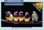 4K-UHD-TV 55U5863DA von Toshiba