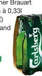 Premium Lagerbier von Carlsberg