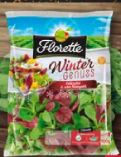 Salat Wintergenuss von Florette