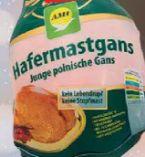 Hafermastgans von AMI