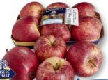 Echt & gut Äpfel Gala von Unsere Heimat