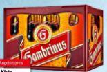 Pils von Gambrinus