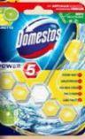 Power 5 WC Steine von Domestos