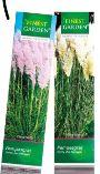 Pampasgras von Finest Garden