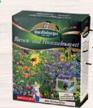 Bienen-Hummelmagnet von Quedlinburger
