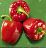 Paprika von Real Bio