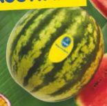 Wassermelone von Chiquita
