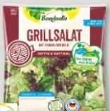 Frischer Salat-Mix von Bonduelle