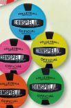 """Volleyball """"Color"""" Gr. 5 von Heimspiel"""