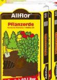 Pflanzerde von Allflor