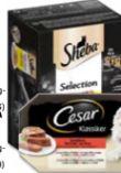 Klassiker von Cesar