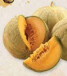 Bio-Honigmelonen