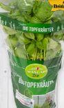Bio Topf-Basilikum von Wasgau Natur Bio