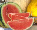 Wassermelonen Mini von SanLucar