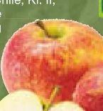 Bio-Äpfel von BioBio