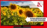 TV TX-55GZW954 von Panasonic