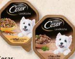 Hundenassnahrung von Cesar