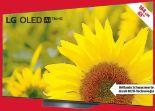 OLED-TV 65BX9LB von LG