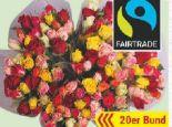 Fairtrade Rosen