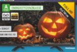 Full HD LED-Fernseher Live 24 Pro von Dyon