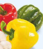 Paprika-Mix von MarktTag