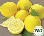 Bio Zitronen von Rewe Bio