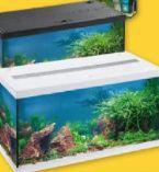 Aquarium-Set von Eheim