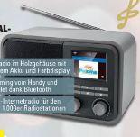 Internet-/Digitalradio CR 510 von Dual