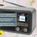 Internet-/DAB+-Radio CR 510 von Dual