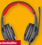 Gaming Headset GXT 310 Radius von Trust