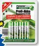 Profi Akku Mignon von Powertec Energy