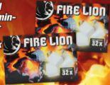 Grillanzünder von Fire Lion