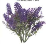 Lavendelbund von Buttinette