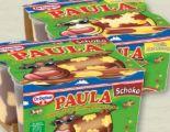 Paula Dessert von Dr. Oetker