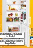 Kühl-Gefrier-Kombination KGw 1455-2 von Liebherr