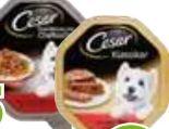 Hundenassfutter von Cesar