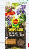 Terrassenpflanzenerde von Compo Sana