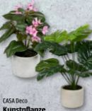 Kunstpflanzen von Casa Deco