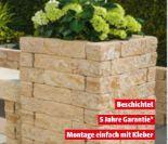 Mauerstein Monza von Mr. Gardener