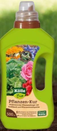 Bio Pflanzen-Kur von Kölle's Bio