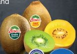 Kiwi Grün von Zespri