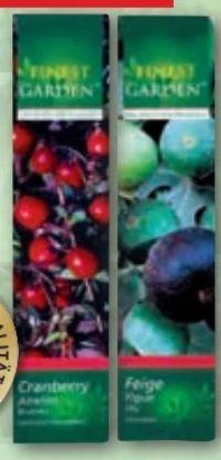 Pflanzen Obst-Mix von Finest Garden