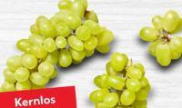 Bio Tafeltrauben weiß kernlos von FeBio