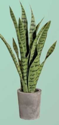 Kunstpflanze Sansevieria