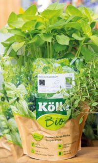 Bio Küchenkräuter von Kölle's Bio