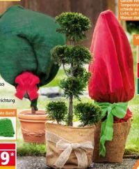 Winter Pflanzenschutz von Powertec Garden