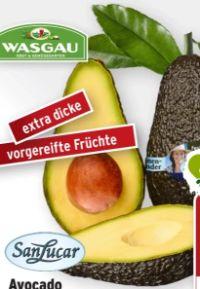 Avocado von SanLucar